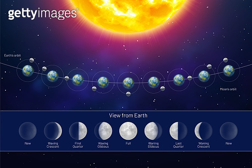 Movement of the Moon Phases view from the Earth