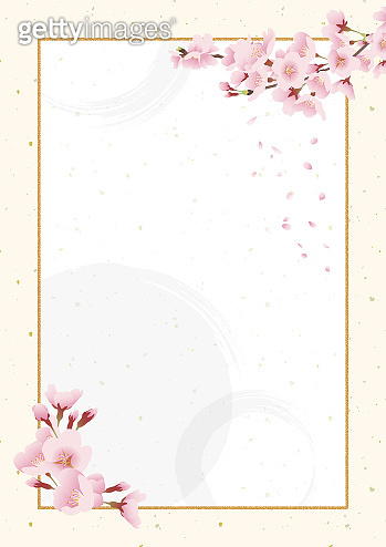 Cherry blossoms, Japanese style background material. Celebration (white, ivory, Japanese paper.vertically long A3,A4 ratio)