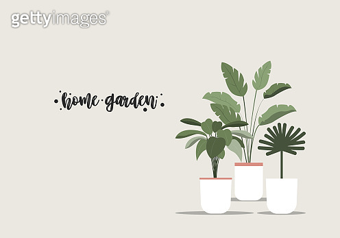 Home garden Vector template for posters and banners with copy space