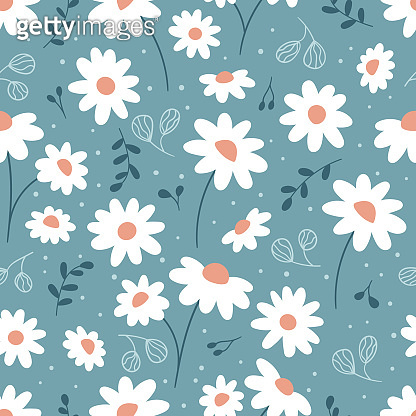 Floral seamless pattern with chamomile.