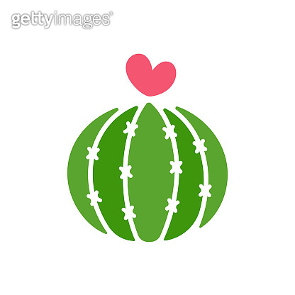 Cactus vector. A variety of cacti that are blooming are pink hearts. Isolated on white background.