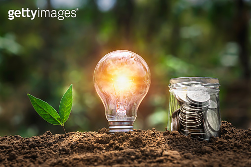 lightbulb with plant growing and money in jug glass on soil in nature. saving energy power. finance accounting concept