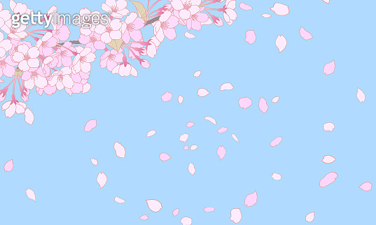 A background illustration of a blue sky and cherry blossoms in full bloom.