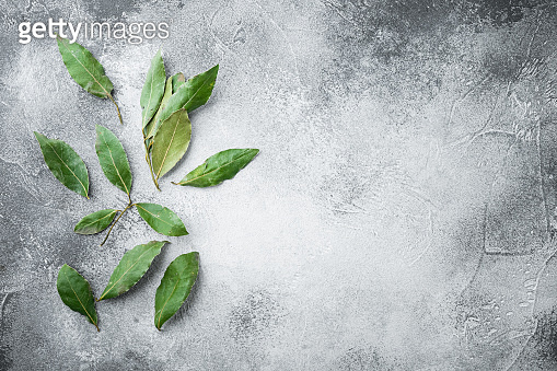 Aromatic organic bay leaves, on gray stone background, top view, flat lay, with copy space for text