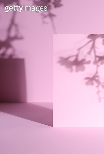Pink Abstract Background with cherry blossom shadows and geometric shadows