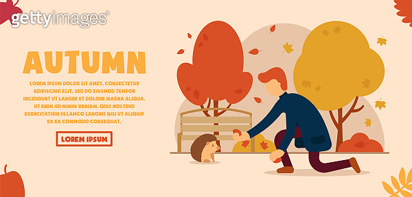 Vector autumn concept. A man in an autumn, beautiful park feeds a hedgehog from his hands. Autumn animals. Can be used for website and web banner.