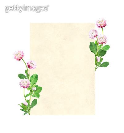 Vertical retro card with wild red clover (Trifolium pratense) flowers