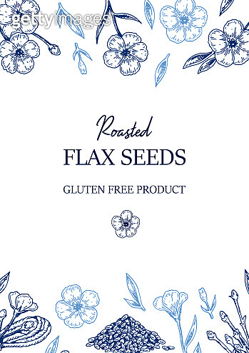 Hand drawn flax vertical design. Vector illustration in sketch style for linen seeds and oil packaging