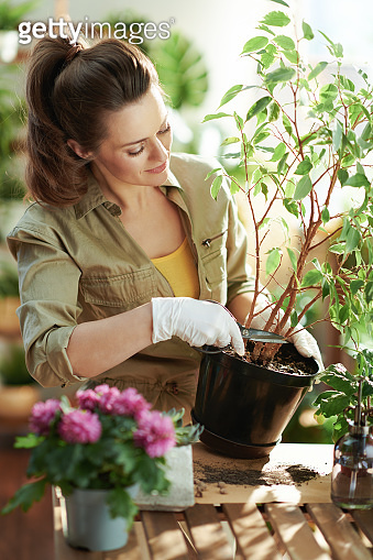 housewife in rubber gloves at home in sunny day do gardening