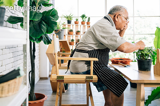 An Asian retired grandfather loves to take care of the plants in an indoor garden in the house with a smile and happiness. Retirement activities.