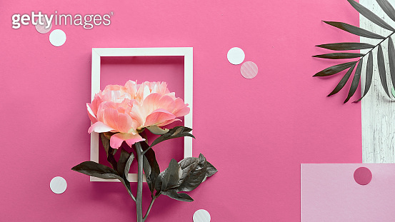Pink peony flower, greeting card, golden frame. Minimal simple flat lay with palm leaf on abstract pink geometric background with paper confetti, polka dots