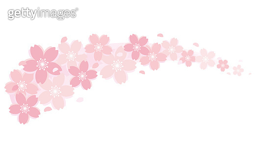 cherry blossom wave material,cherry blossom blizzard,curved line