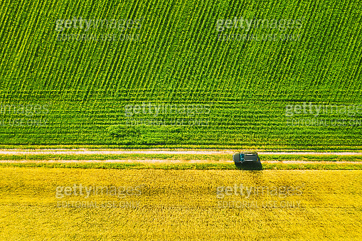 Aerial View Of Renault Duster Car SUV Parked Near Countryside Road In Spring Field Rural Landscape. Car Between Young Wheat And Corn Maize Plantation