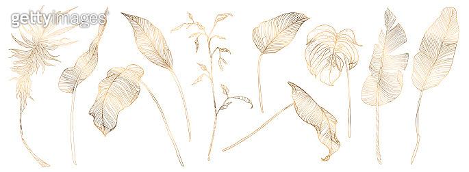 Palm leaves, gold, black, white marble template, artistic design, modern backgrounds. Minim pattern, Luxury illustration