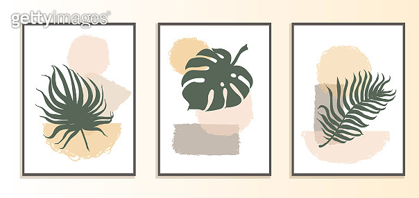 Set with collage modern poster with abstract shapes and illustration of plant