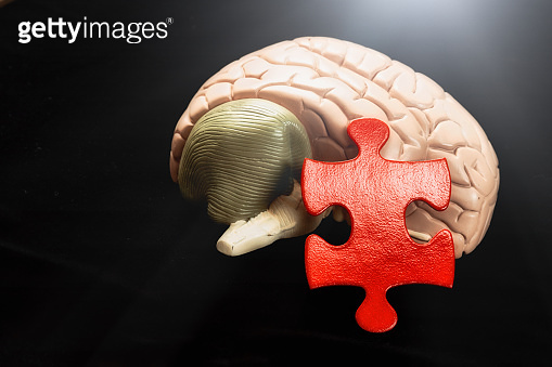 Understanding the human mind: jigsaw puzzle piece with brain model symbolizes solution to medical and psychological problems