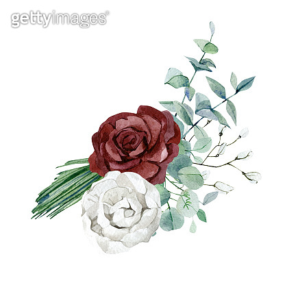 Watercolor white and burgyndy flower bouquet. Rose, fir branch, eucalyptus leaves, wild floral. Greenery bouquet illustration for bridal show, baby shower, wedding invintation.