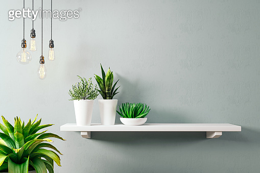 3d render of mock wall with home plants