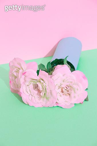 Decor white roses  flowers in vase. Still life minimalist fashion scene. Bloom, Spring,summer, greeting card, invitation concept.