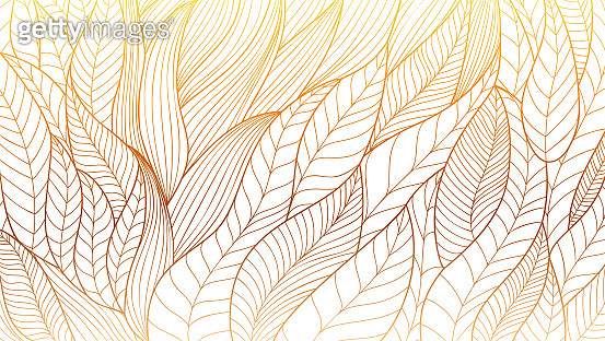 Hand drawn Eco ornament. Stylized plant leaves. Abstract vector line art. Vintage pattern from wavy lines.
