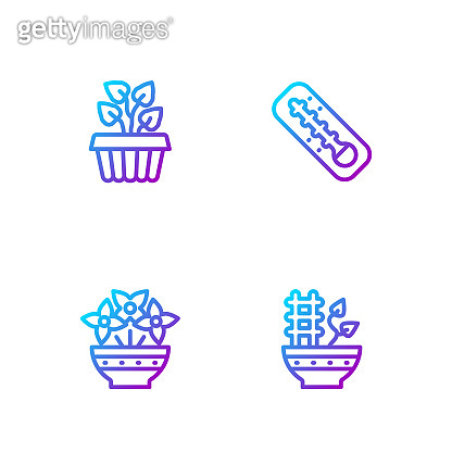 Set line Plant in pot, Flower vase, Indoor plant ivy and Meteorology thermometer. Gradient color icons. Vector