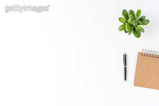 Elegant office desktop with notebook, pen and small plant isolated on white background with copyspace. Modern workspace