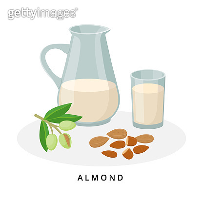 Almond milk in jug and glass. Plant milk, vegan milk concept. Vector illustration isolated on white background. Alternative milk and ingredients.