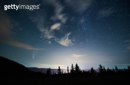 Mountain forest under beautiful night sky with stars.