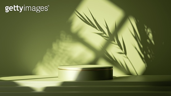 3d render, abstract green background. Empty stage with steps and cylinder podium, leaf shadows and bright sunlight going through the window. Minimal showcase scene for product presentation