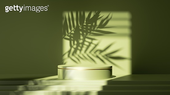 3d render, abstract green background. Empty stage with steps and cylinder podium, leaf shadows and bright sunlight going through the square window. Minimal showcase scene for product presentation