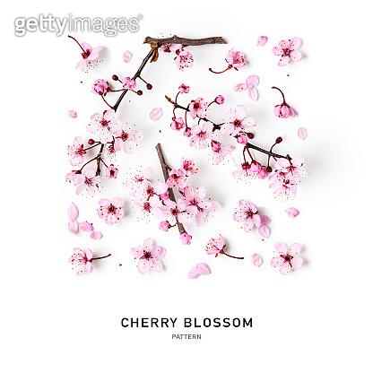 Cherry blossom, pink sakura spring flowers creative pattern