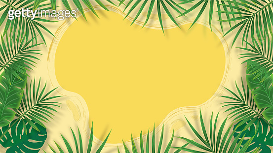 Frame of tropical plants pattern abstract background with copy space for your text, banana and monstera and palm tree leaves background