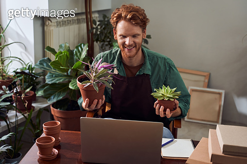 Florist  showing cactuses to customer