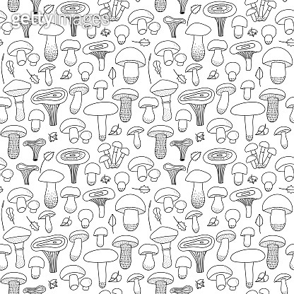 Edible Mushrooms and leaves seamless pattern on an isolated white background. Forest, mushroom print for textiles in hand drawn doodle style. Black-white pattern. Vector linear illustration.