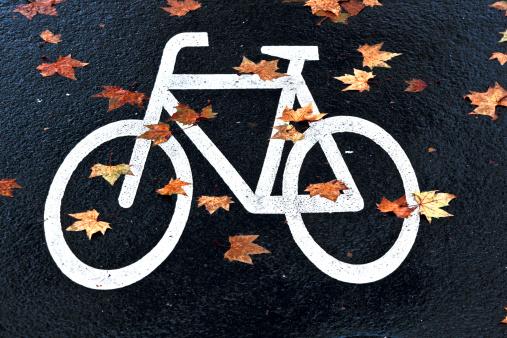 가을엔 자전거