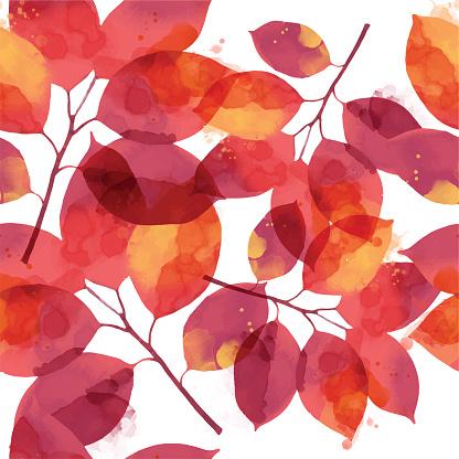 단풍잎 백그라운드