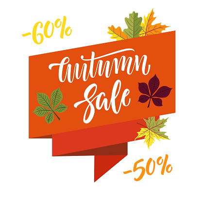 Autumn sale banner and pattern