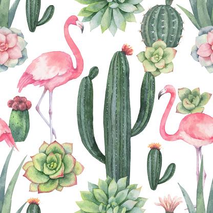 다육식물, 수채화, 패턴