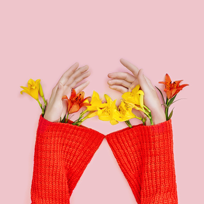 Hands and spring flowers