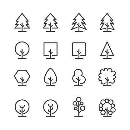 나무&나뭇잎 아이콘