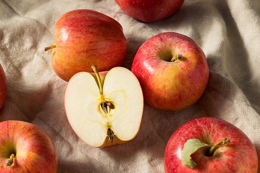 Red Organic Gala Apples
