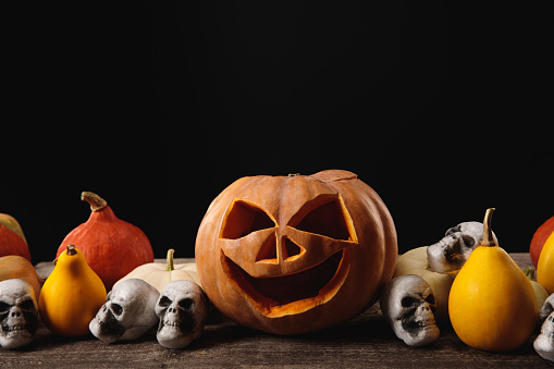 Halloween pumpkins and decorative skulls on wooden rustic table isolated on black