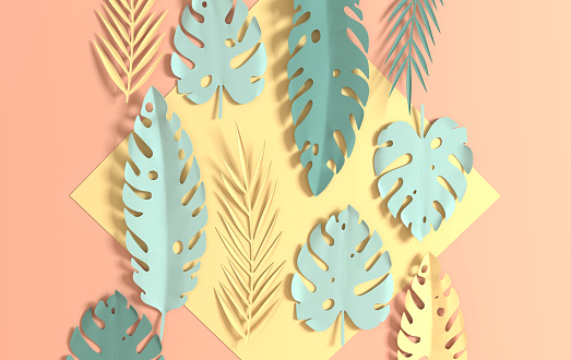 Tropical paper palm leaves