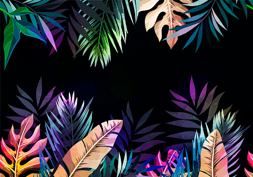 Abstract tropical plants