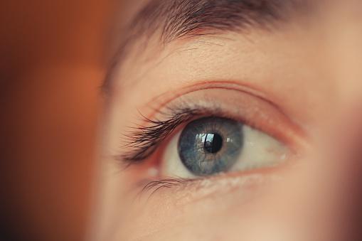 Eye - Human body