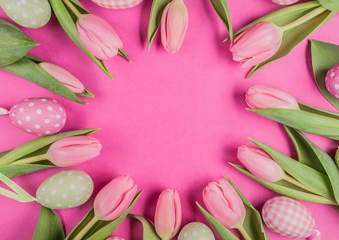 Eggs and Tulip