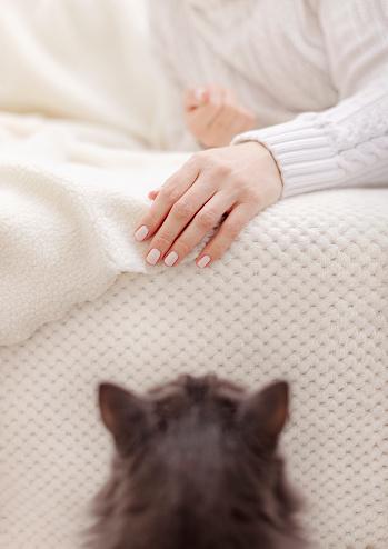 고양이와 휴식을