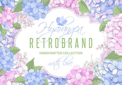Pattern with Hydrangea flowers