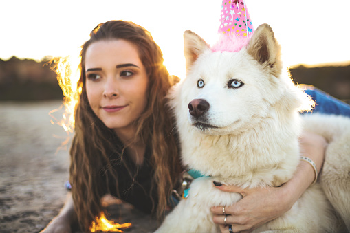 Birthday Party with Husky Dog