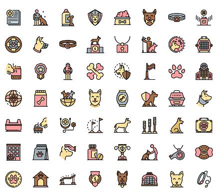 Line&Color Icon